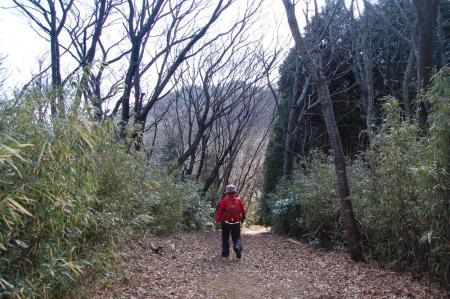 22ハイキングコースへ