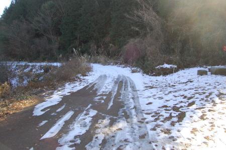 8団子石峠の林道