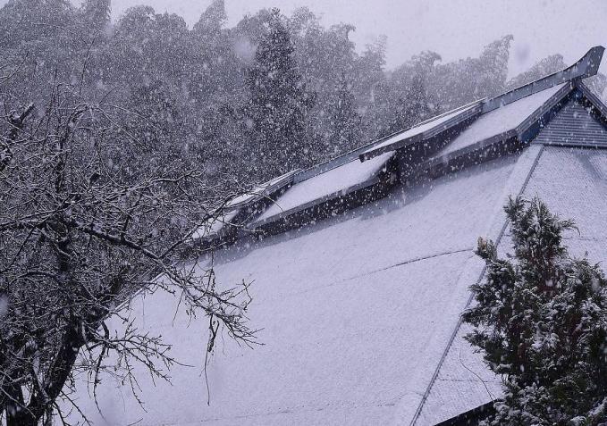 sg-2009年12月11日0002