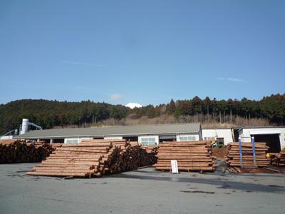 2010-3-8-2.jpg