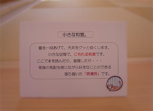 2011-3-13-01-06.jpg