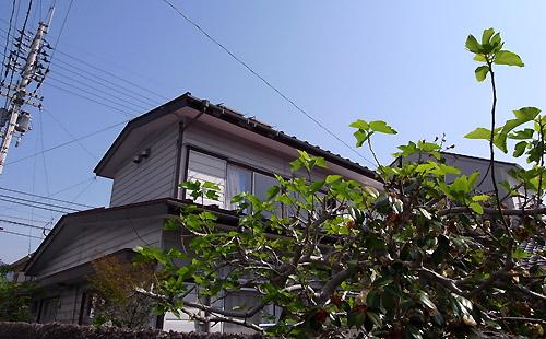 2011-5-7-1.jpg