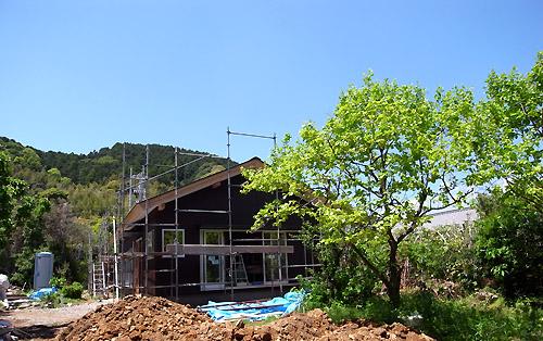 2011-5-7-3.jpg