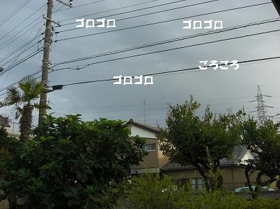 画像8 065