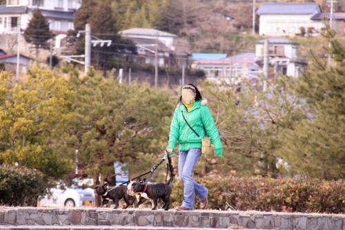 2010_0201_6.jpg