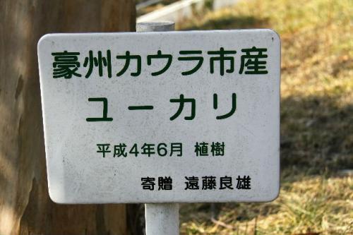 2010_0217_6.jpg