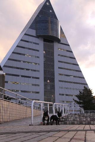 2010_0411_2.jpg