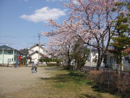 2010_0426_5.jpg