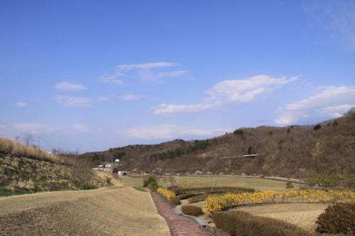 2010_0501_5.jpg