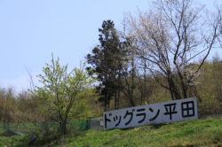 2010_0511_3.jpg