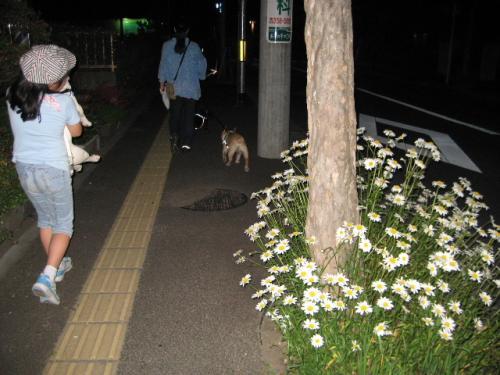 2010_0608_5.jpg