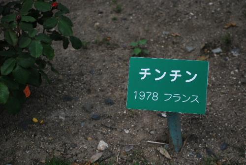 2010_0611_8.jpg
