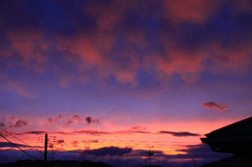 2010_0909_5.jpg