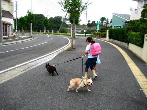 2010_0915_5.jpg