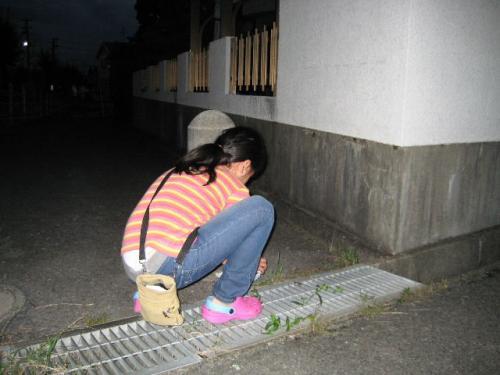2010_0918_3.jpg