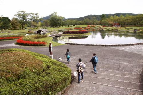 2010_0930_3.jpg