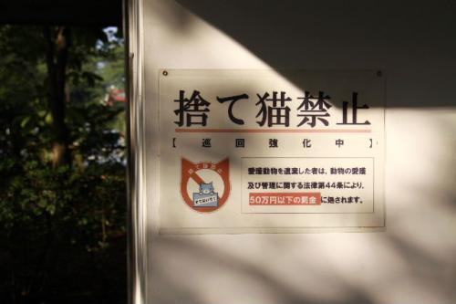 2010_1003_6.jpg