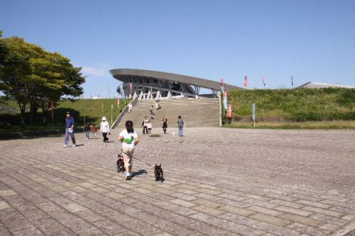 2010_1004_3.jpg