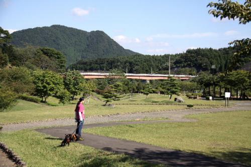 2010_1007_1.jpg
