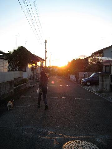 2010_1111_6.jpg