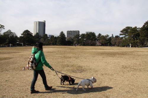2011_0128_8.jpg