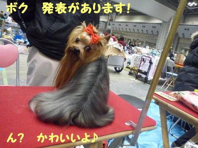 東京インター2