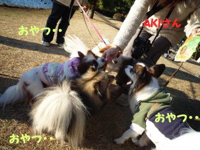 元日オフ2