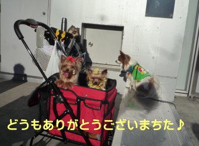 千葉インター2