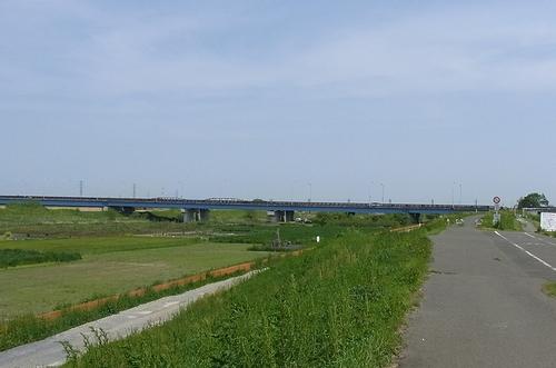 遊水地-渡良瀬大橋