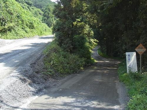 林道白岩柿平線-林道スタート