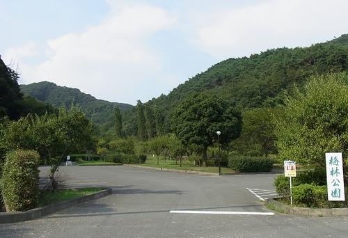 唐沢山~梅林公園-梅林公園