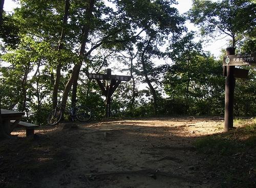 大綱林道~両崖山~織姫公園-雷電神社分岐