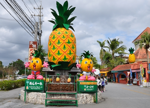 パイナップルパーク1