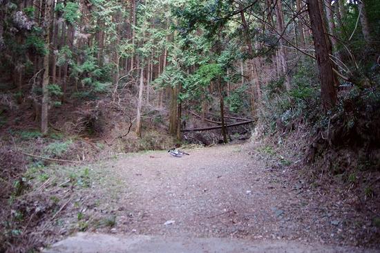 林道宮の入線-終点