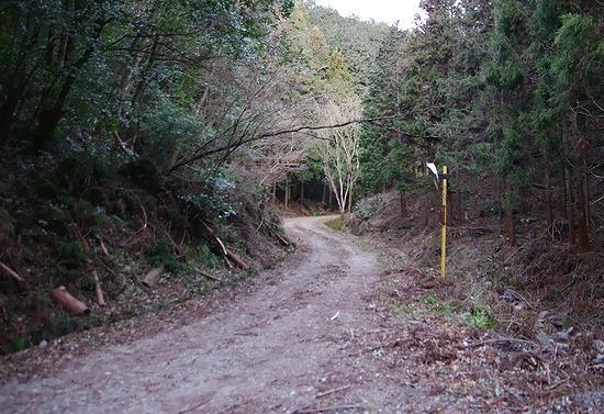 林道宮の入線-途中