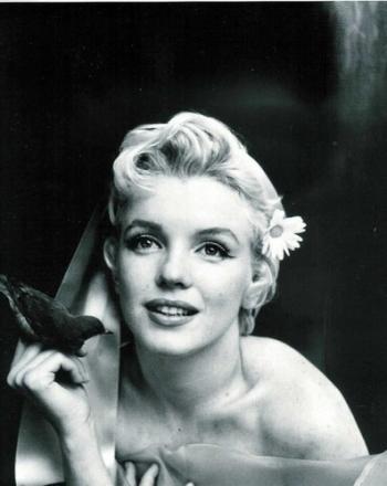 Marilyn-Monroe-7020_convert_20120428194709.jpg