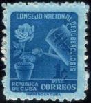 キューバ・青いバラ