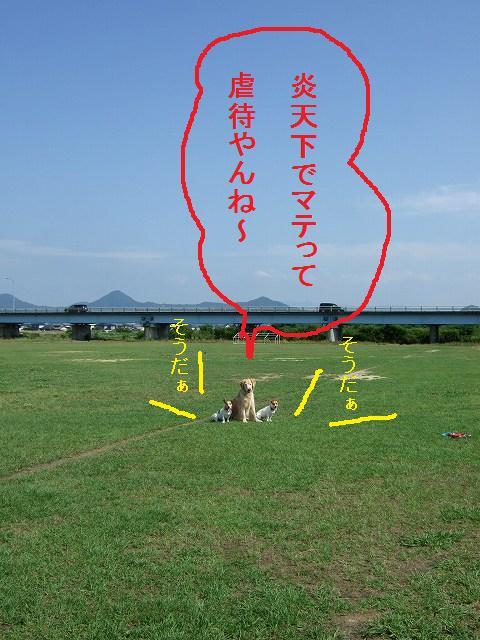 10-2010_06220008.jpg