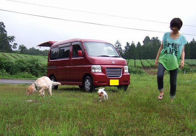 10-2010_07020032.jpg