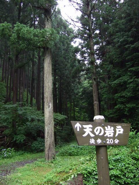 10-2010_07020045.jpg