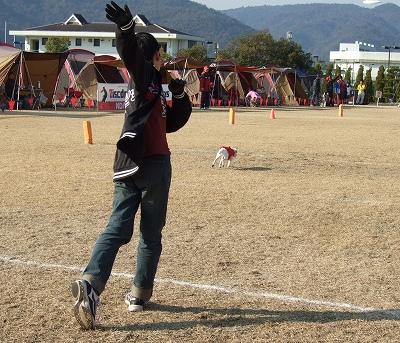 a-2010_01260018.jpg