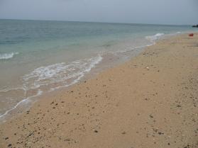 100502シンリ浜