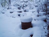 雪に埋もれた金魚鉢H211218