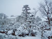 雪の正月H220101