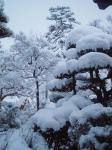 雪の三日目H220103