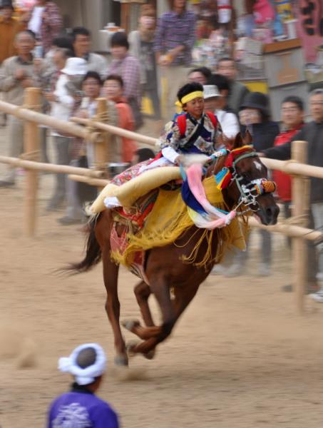 14お供馬_3459