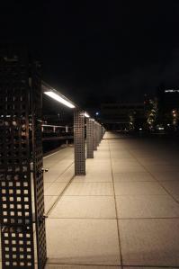 横浜の夜景16