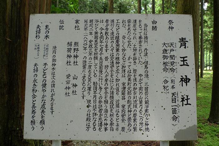 天目一箇命 青玉 神社 兵庫