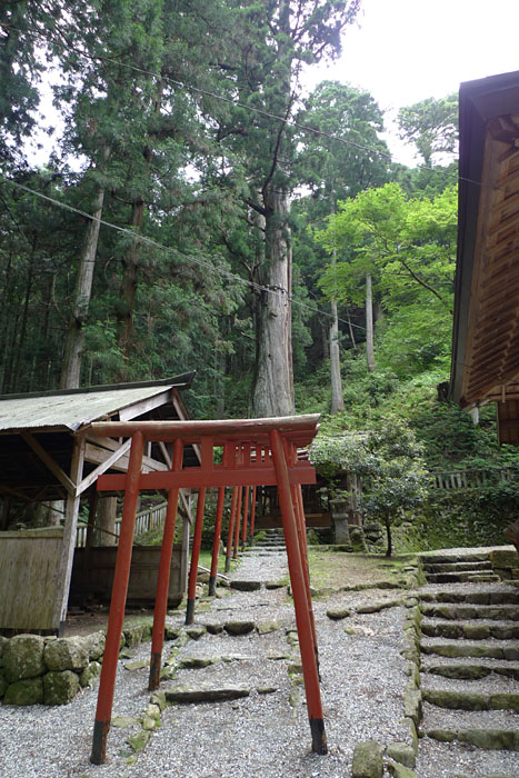 青玉神社 摂社 天戸間見の森
