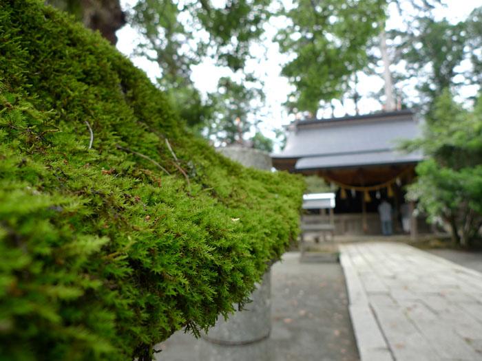 京都 元伊勢 外宮